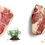 Carne Bovina de Boi a Pasto X Confinamento – Aspectos Nutricionais