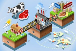 stock-vector-meet-industry-stages-beef-steak-processing-d-web-isometric-infographic-concept-factory-281283401 (1)