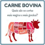 CORTES DE CARNE BOVINA E TEORES DE GORDURA